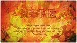 Hope~Lamott