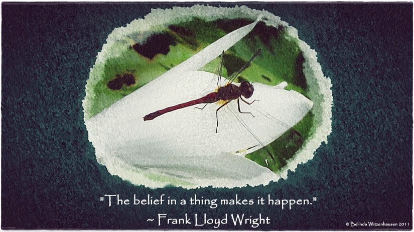 Dragonfly Watercolour Wallpaper