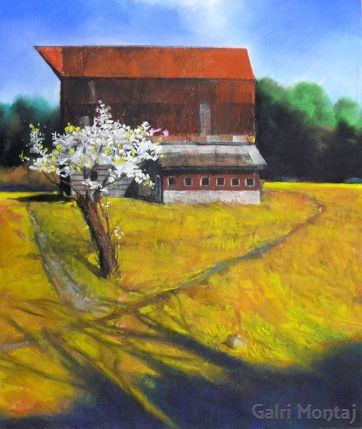 """Apple Blossoms — Gold Field  14 x 17"""", pastel"""