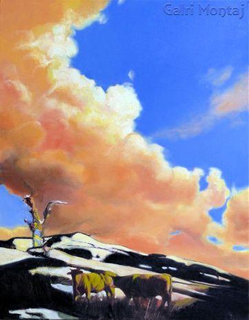 "Long Cloud  25 x 32"", oil"