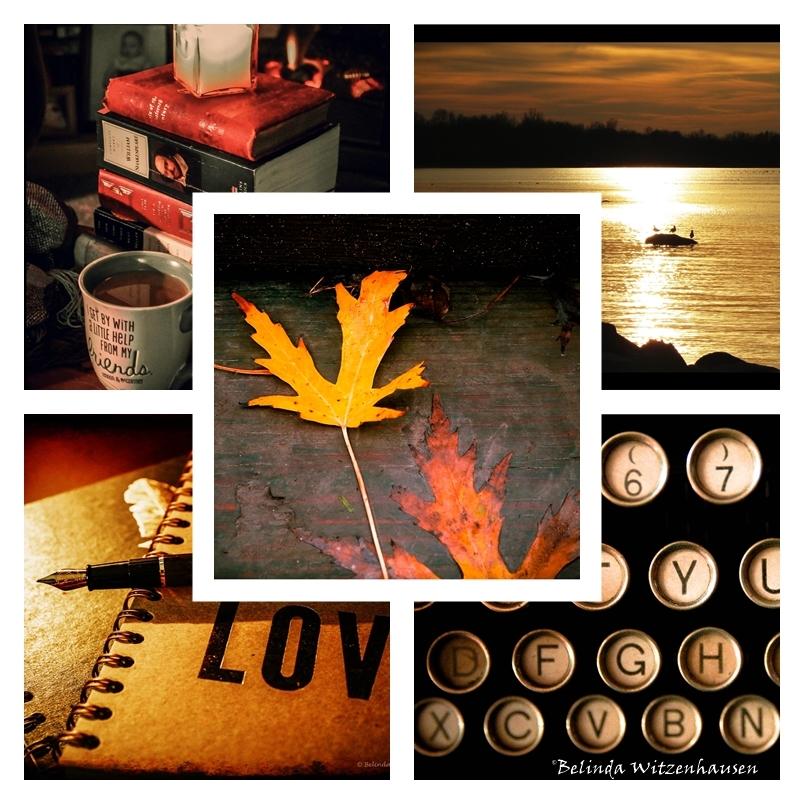 November Collage